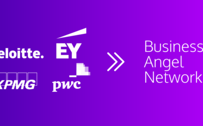 Will Big Consultancies Become Big Business Angel Networks?